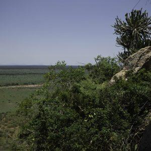 Nkumbe expanse.