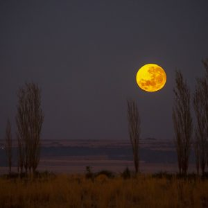 Full moon North West province