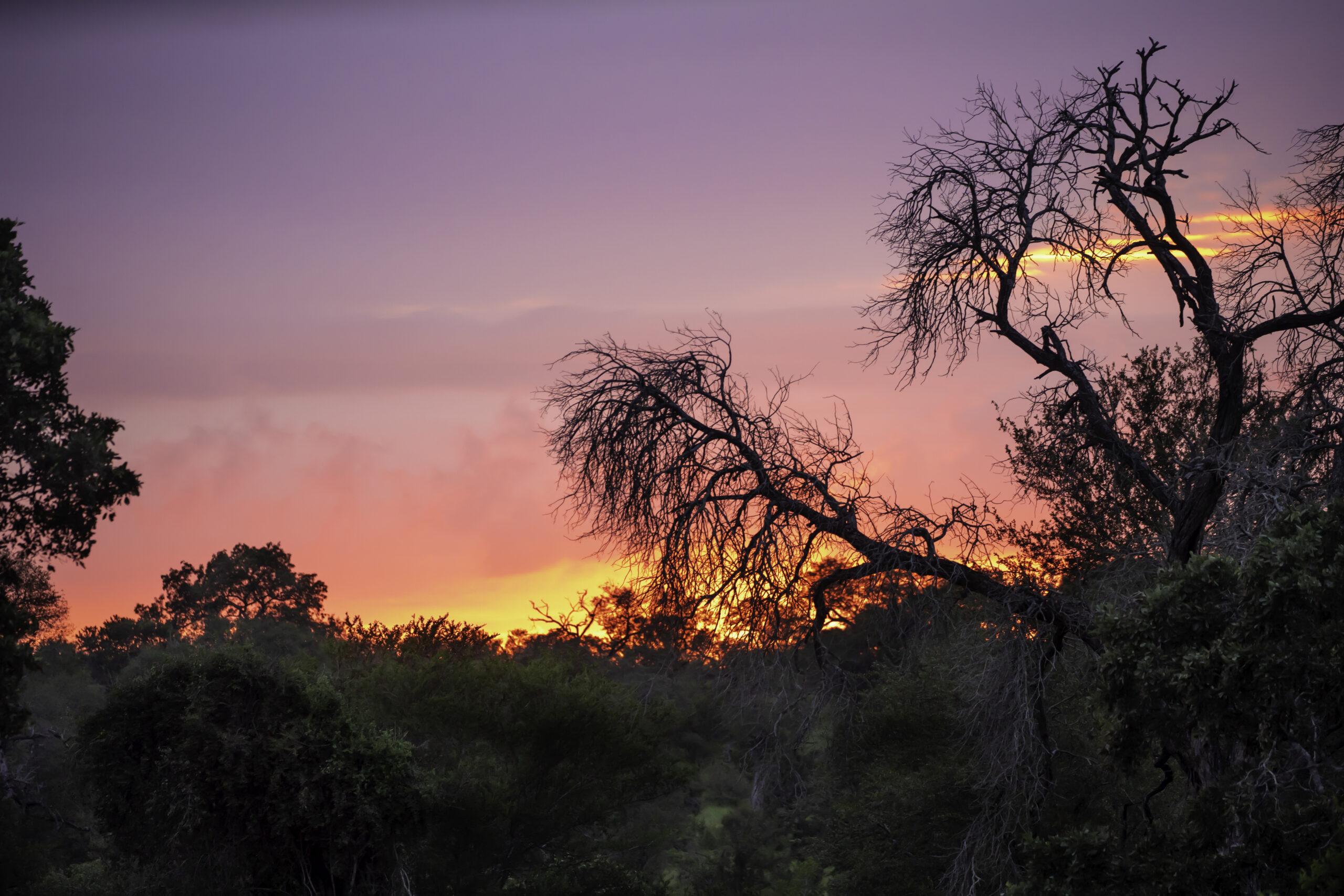 Sunrise KNP