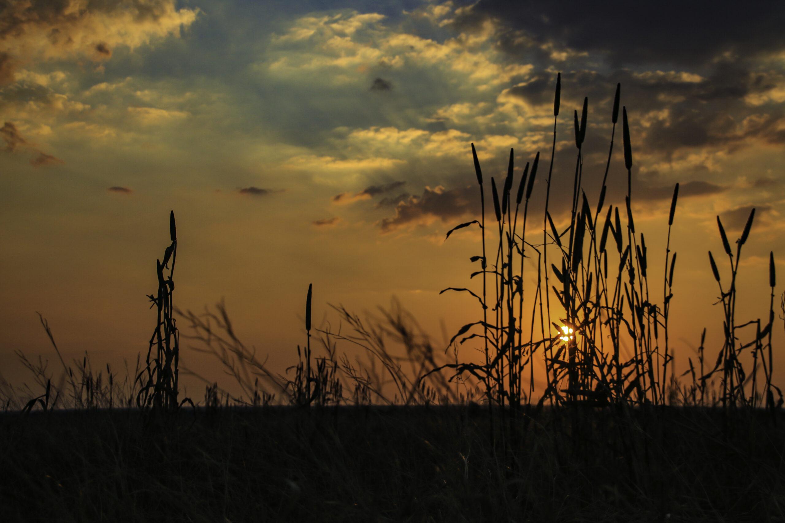 Swartwater sun set