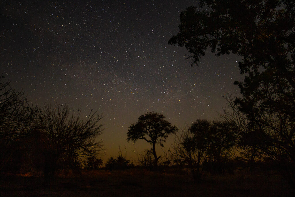 Stars, Kruger.